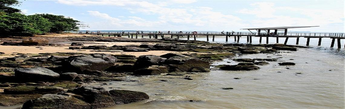 Pulau Ubin & Chek Jawa – Rustic Singapore & A Wetlands Treasure 06.jpg-1140x360