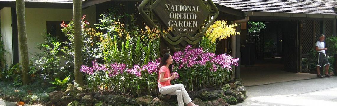 National Orchid Garden 5.jpg-1140x360