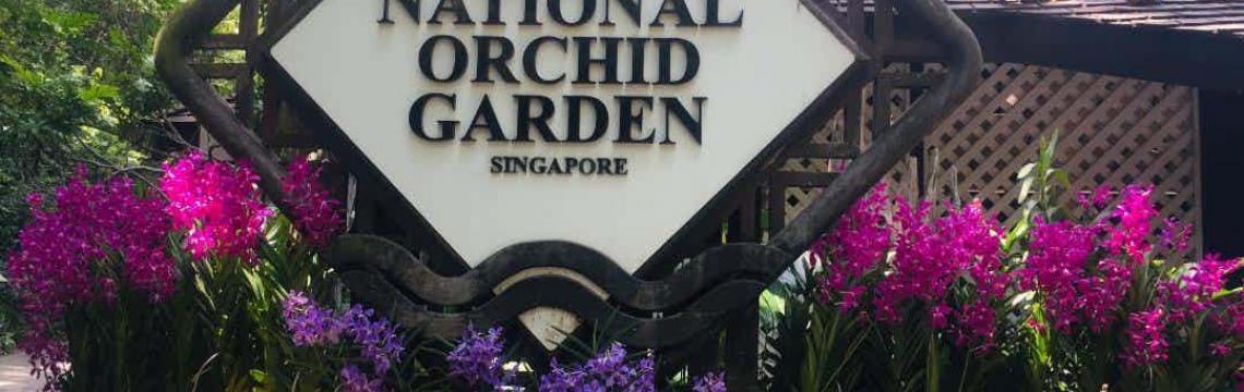 National Orchid Garden 7.jpg-1140x360