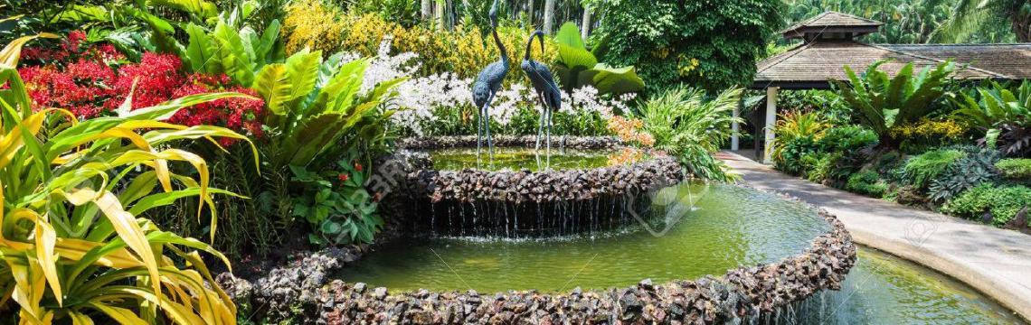 National Orchid Garden 6.jpg-1140x360