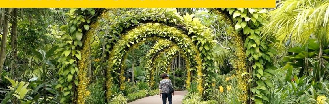 National Orchid Garden.jpg-1140x360