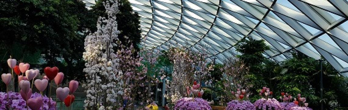Image 1 - Petal Garden at Canopy Park.jpg.jpg-1140x360