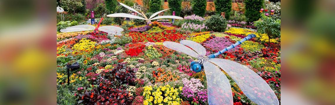 gardens.jpg-1140x360