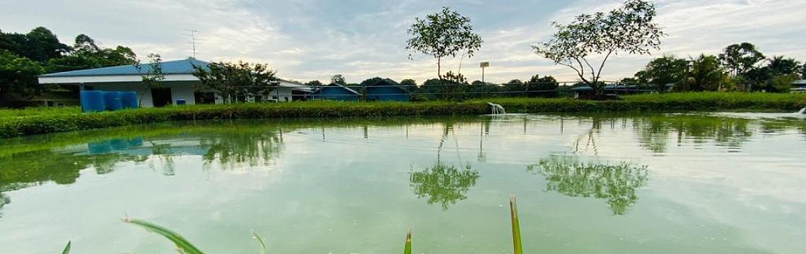 lgt_fishfarming_banner.png-1140x360