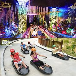Madame Tussauds + 2 Luge Combo [Special Deals]