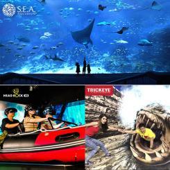 S.E.A Aquarium + Trickeye + Headrock [Adult]
