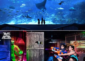S.E.A Aquarium + Nerf Action Xperience [Youth]