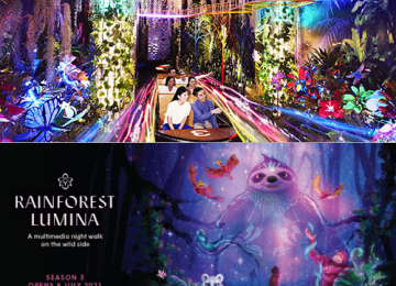 Madame Tussaud Sentosa + Rainforest Lumina [Senior]